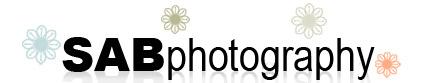 blog.sabrinabrantphotography.com logo